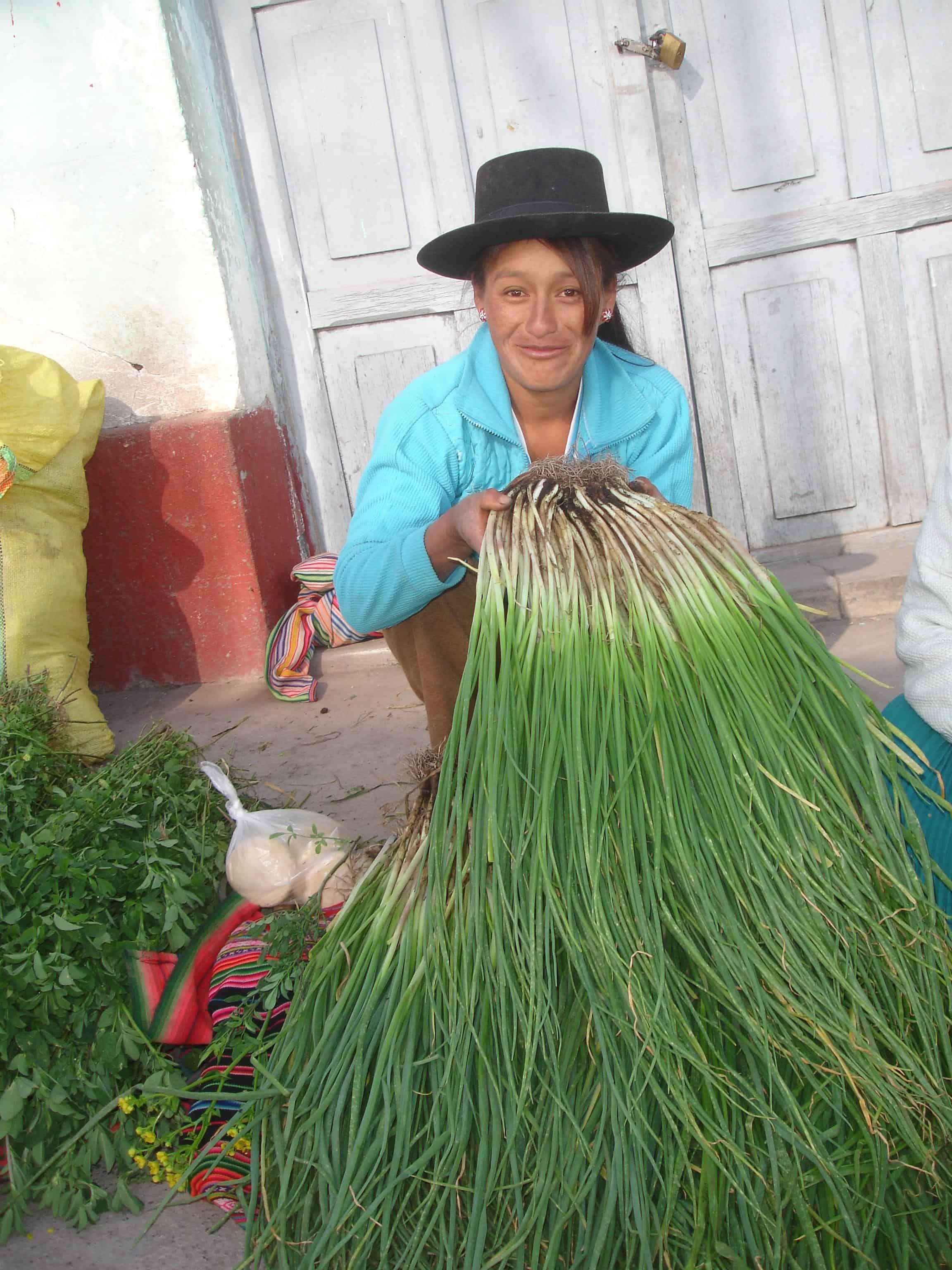 Archive-Peru-Tadepa-2