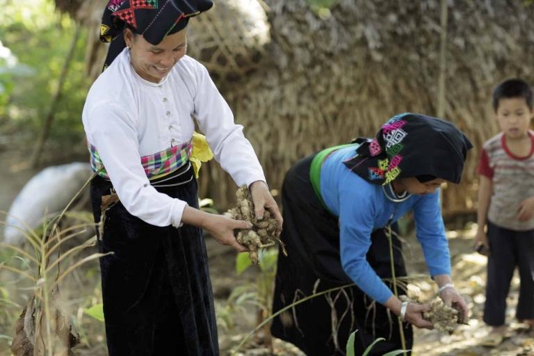Archive-Vietnam-Oxfam-1