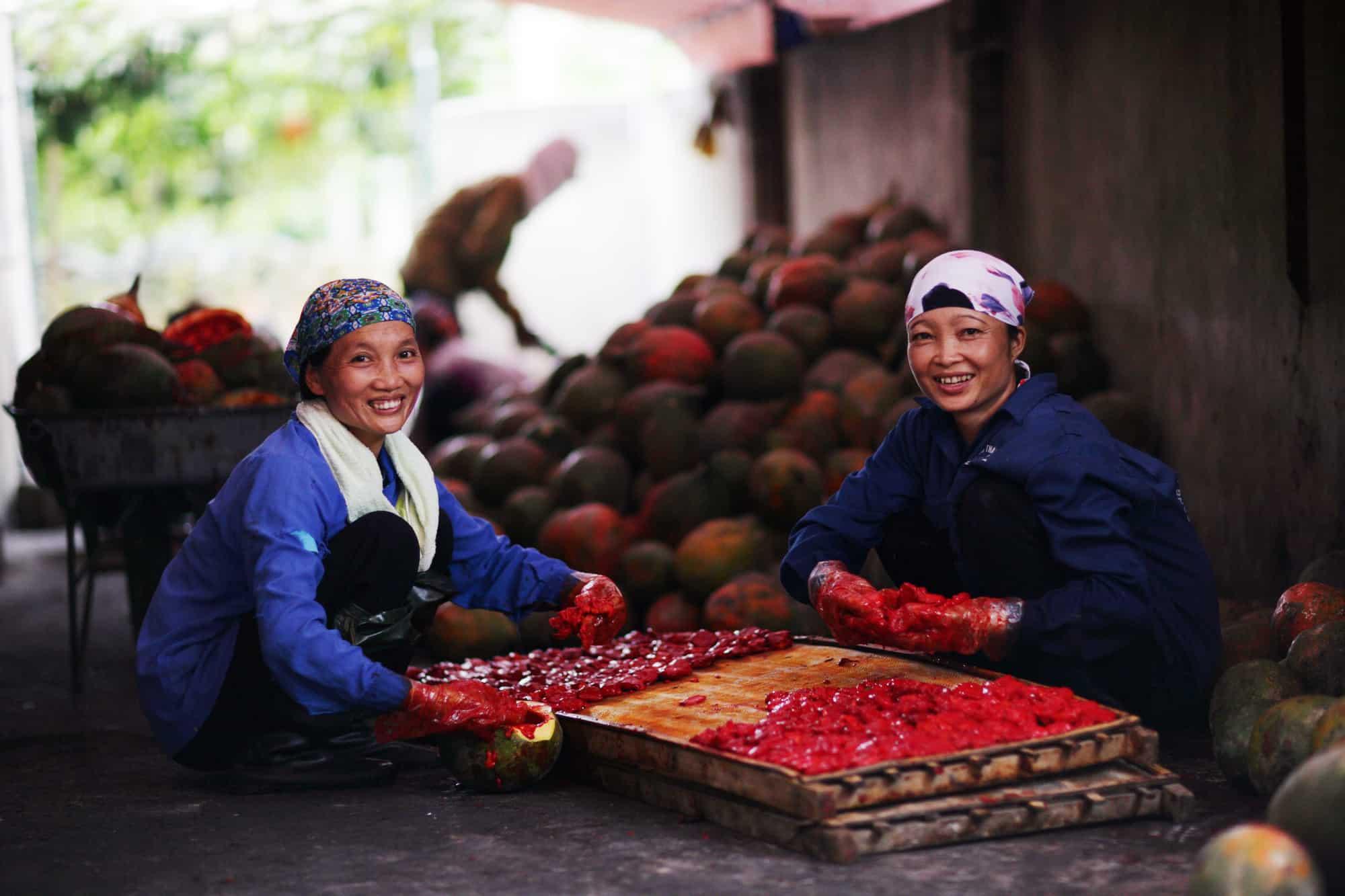 Archive-Vietnam-Oxfam-6