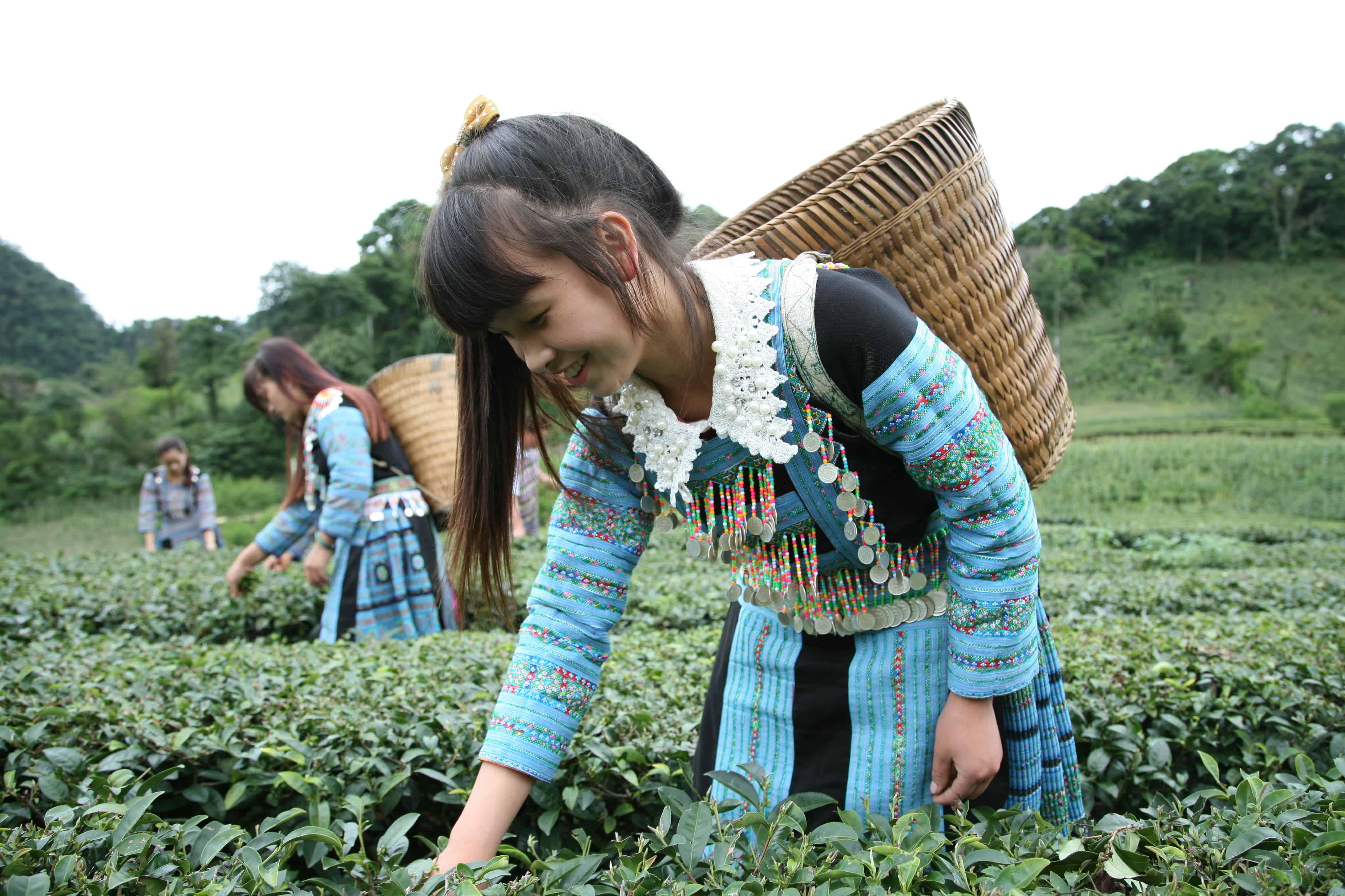 Project-Vietnam-Oxfam-3
