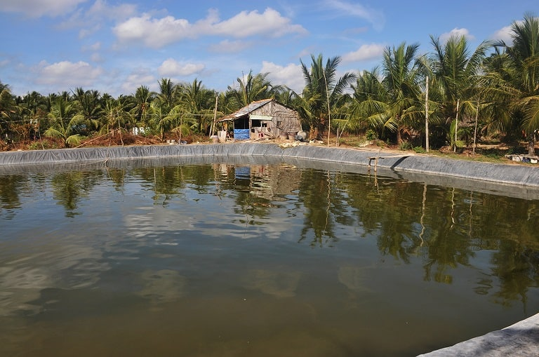 Projects-Vietnam-MCNV-3_1