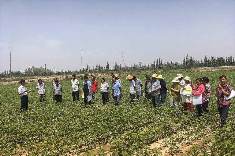 projects-china-solidaridad-04