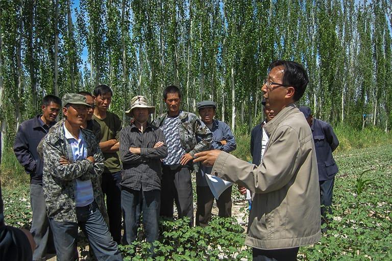 projects-china-solidaridad-05
